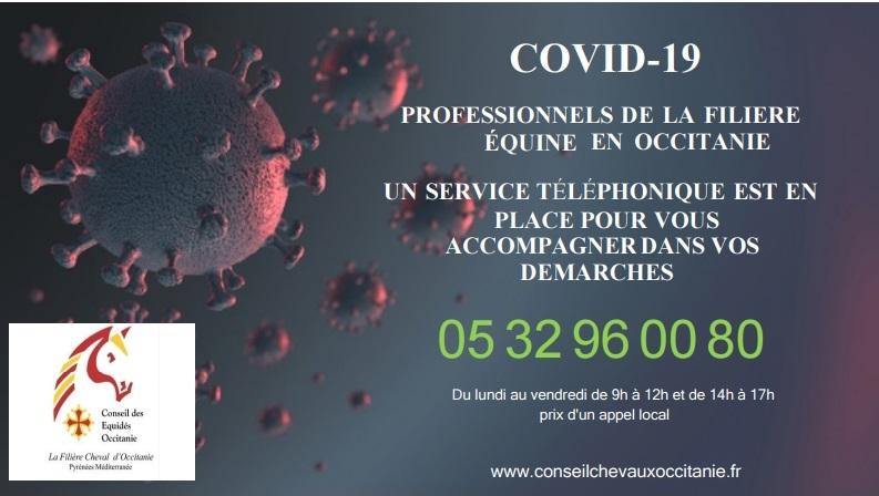 Service téléphonique d'assistance aux professionnels