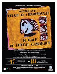 Finale du championnat de race du cheval Camargue